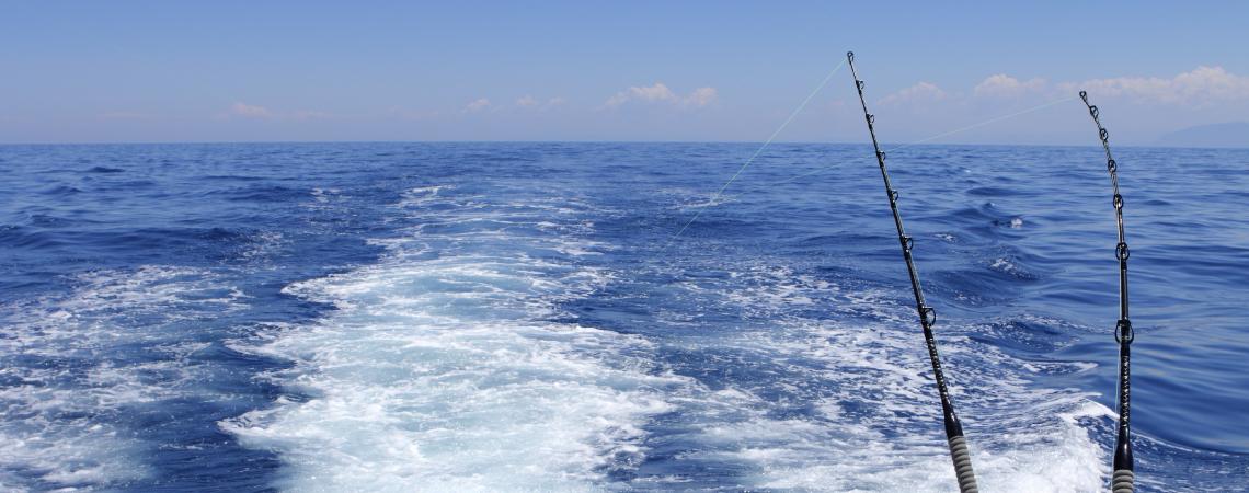 すべての釣り人へ